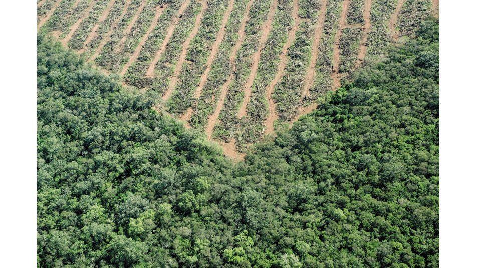 El mundo entra hoy en default ambiental